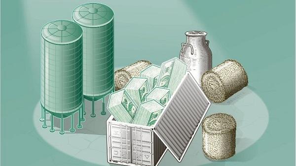 02-dolar-silos